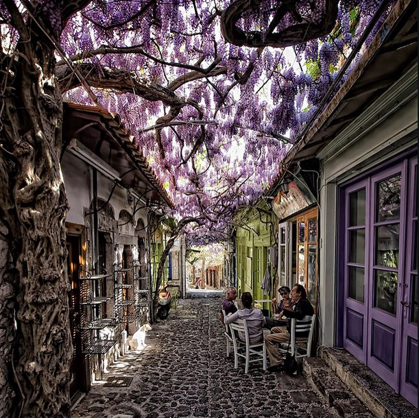 Lesvos, Greece. Dreaming of an Azamara cruise here! #travel