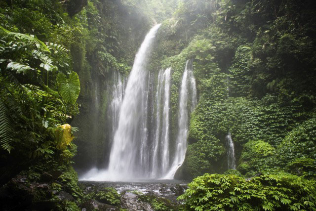 Air Terjun Tiu Kelep waterfall, Senaru, Lombok, Indonesia, Southeast Asia, Asia