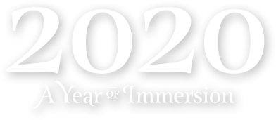 2020: A Year of Immersion