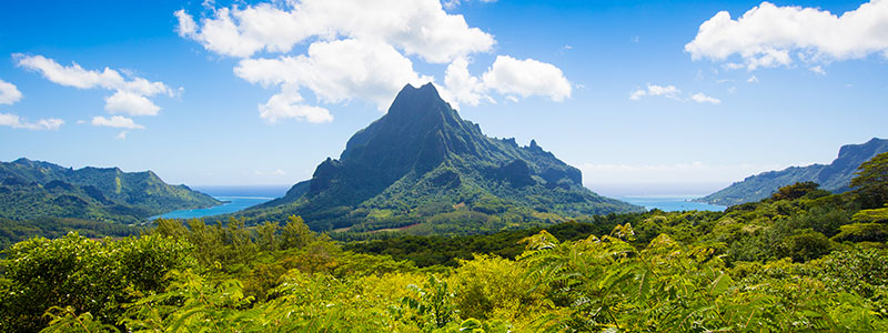 Belvedere Lookout with striking views of the mountains in Moorea, French Polynesia