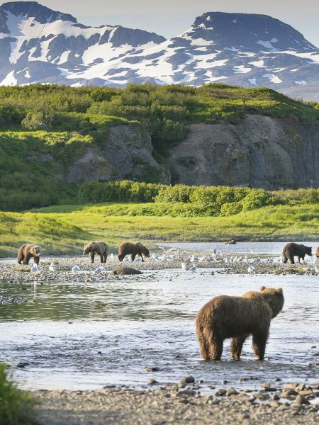 Ten Tips For Taking Incredible Vacation Photos In Alaska