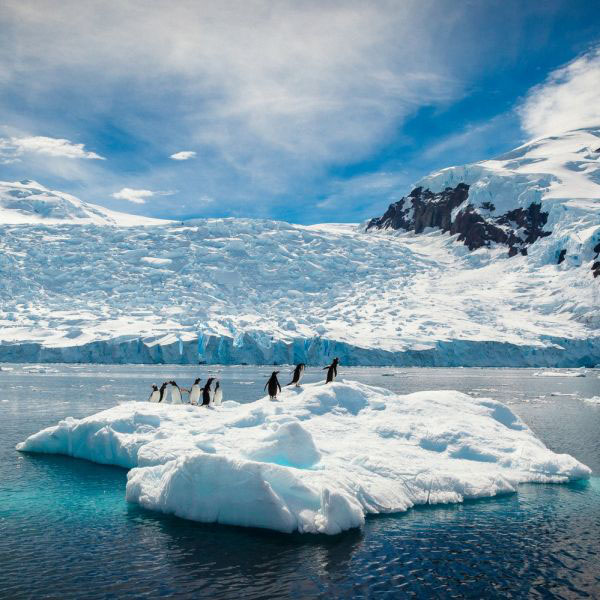 Paradise Frozen: Ten Incredible Antarctica Facts and Photos