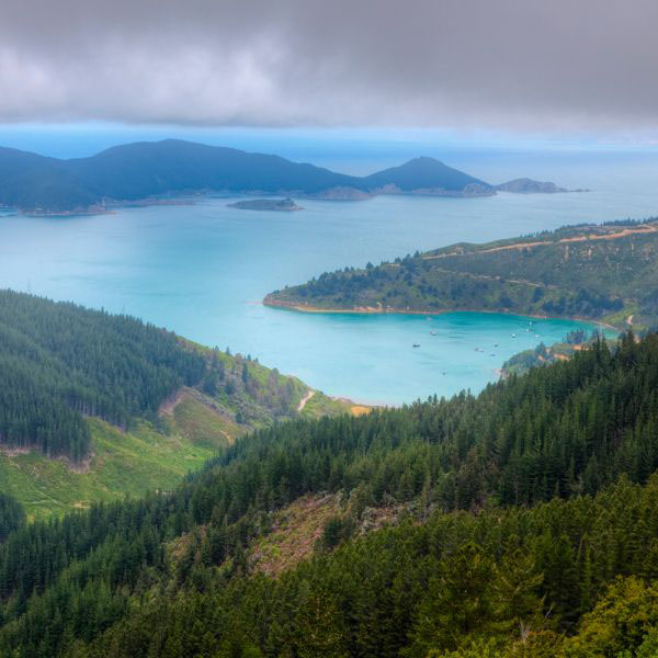 Picton, New Zealand: Gateway to Marlborough Sounds