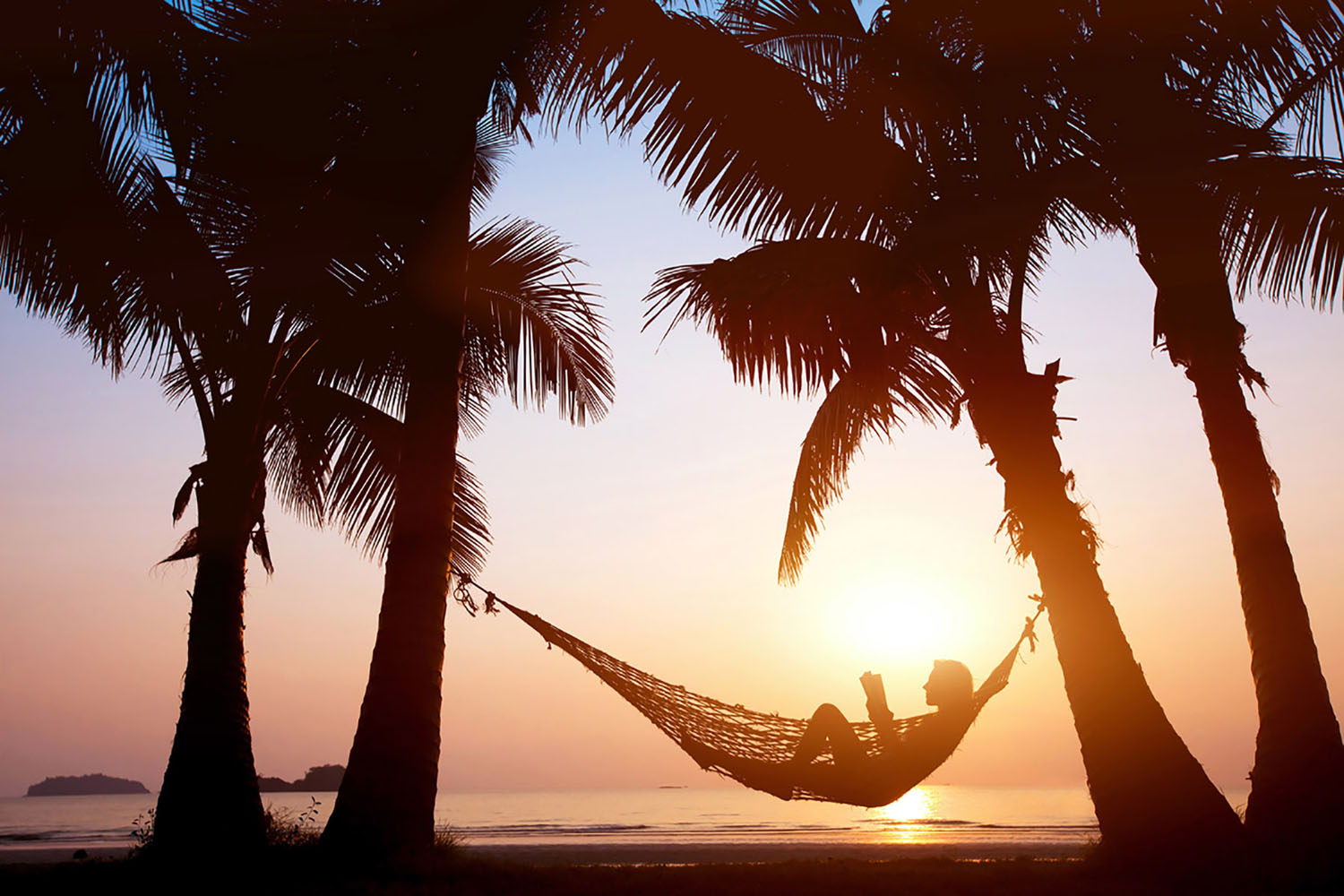 A lady reads a book while laying a hammock at sunset