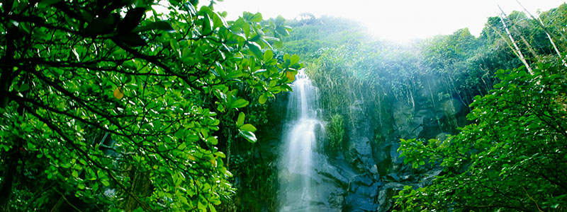 A waterfall in Cirque de Salazie on Reunion Island in the Indian Ocean