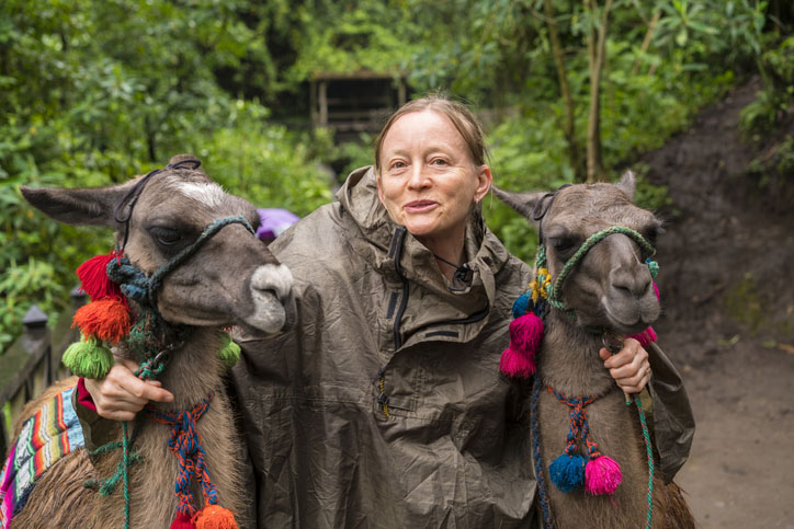 Portrait of Two lamas and smiling Senior woman