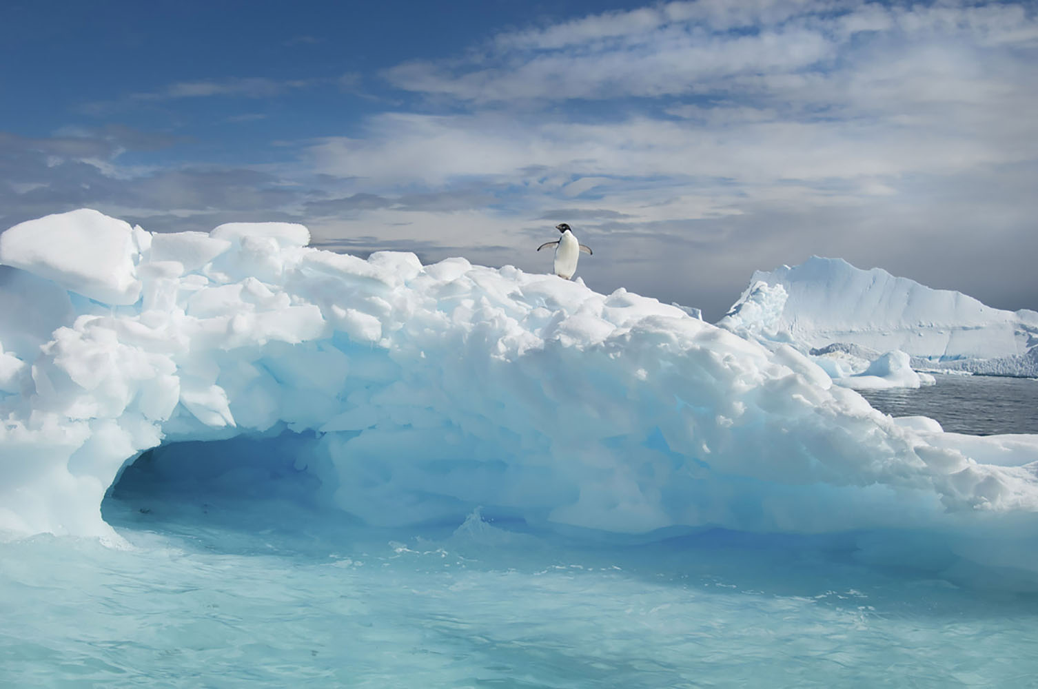 A penguin is perched on an iceberg in Antarctica.