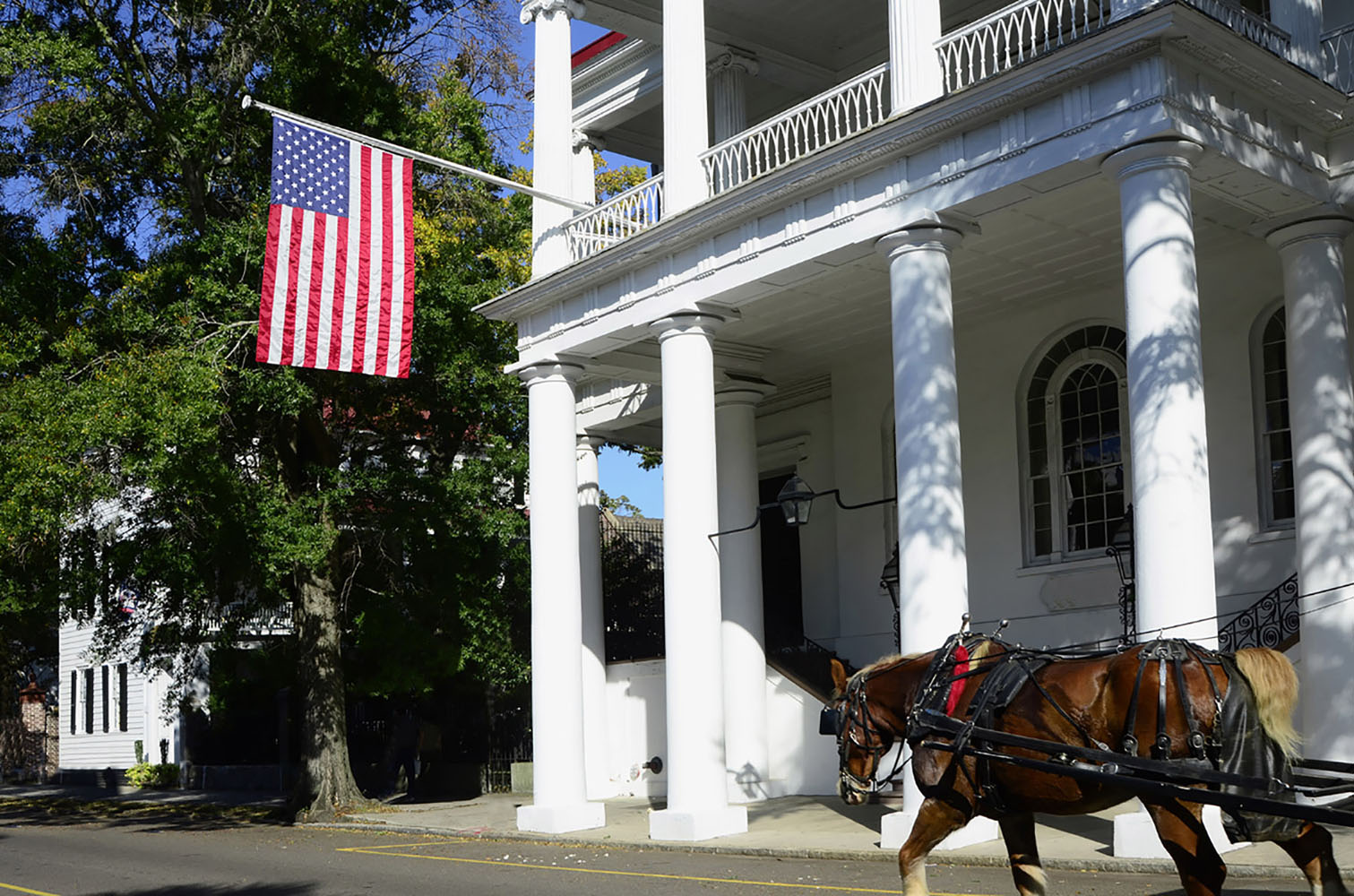 A horse-drawn carriage makes its way through Charleston, South Carolina