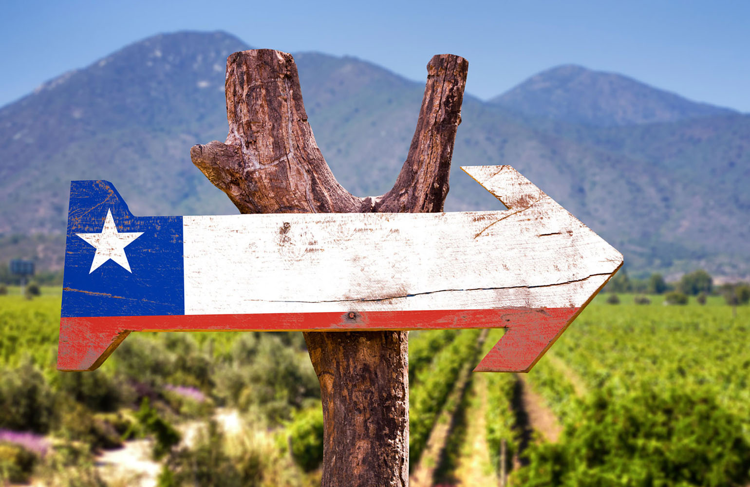 A sign featuring an arrow and the flag of Chile encouraging visitors to explore