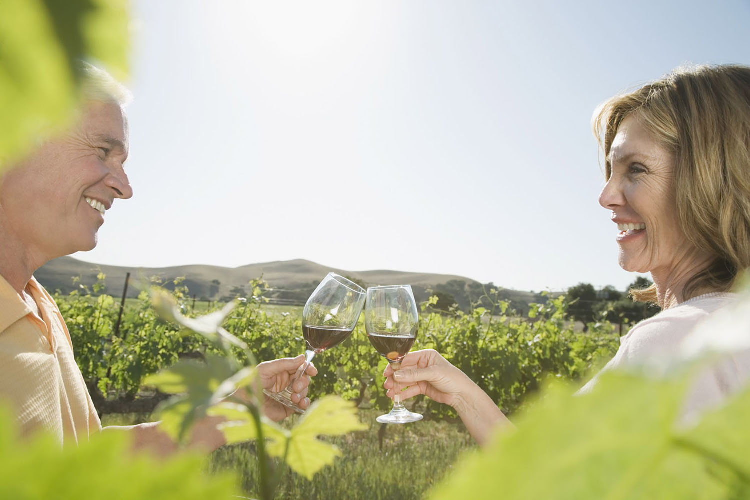Couple toasting with wine glasses in vineyard