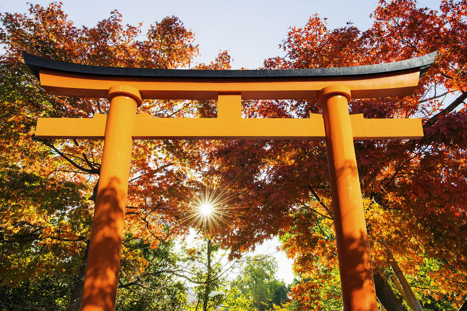 Red Torii Gate in Japan
