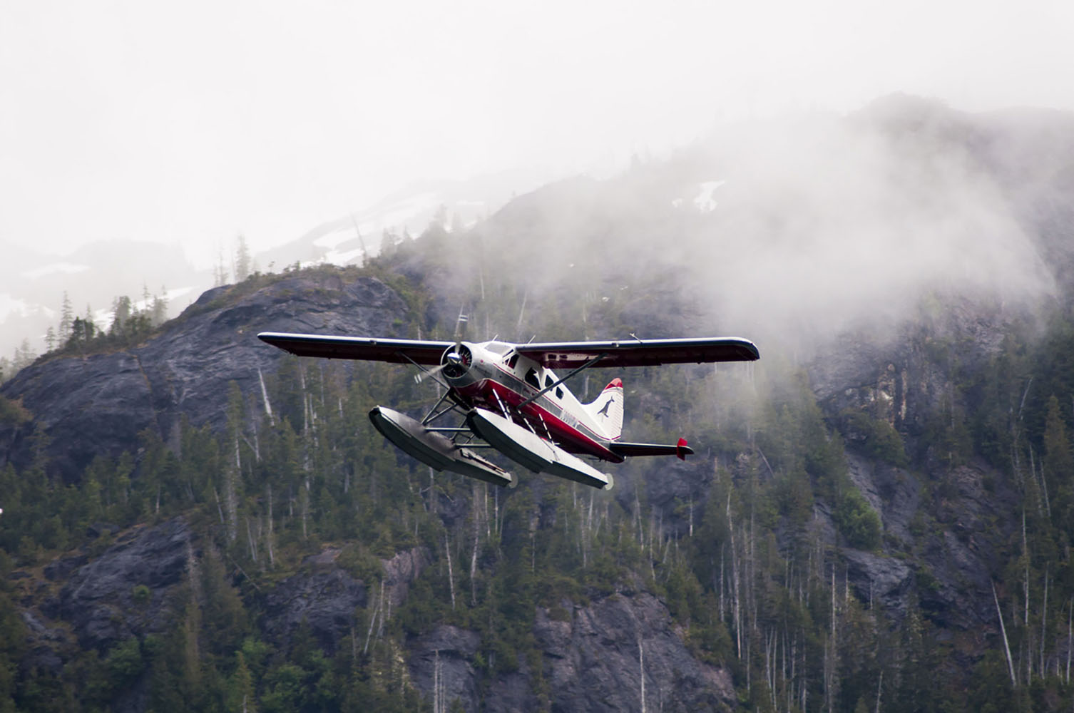A flight-seeing floatplane in Misty Fjords, Alaska