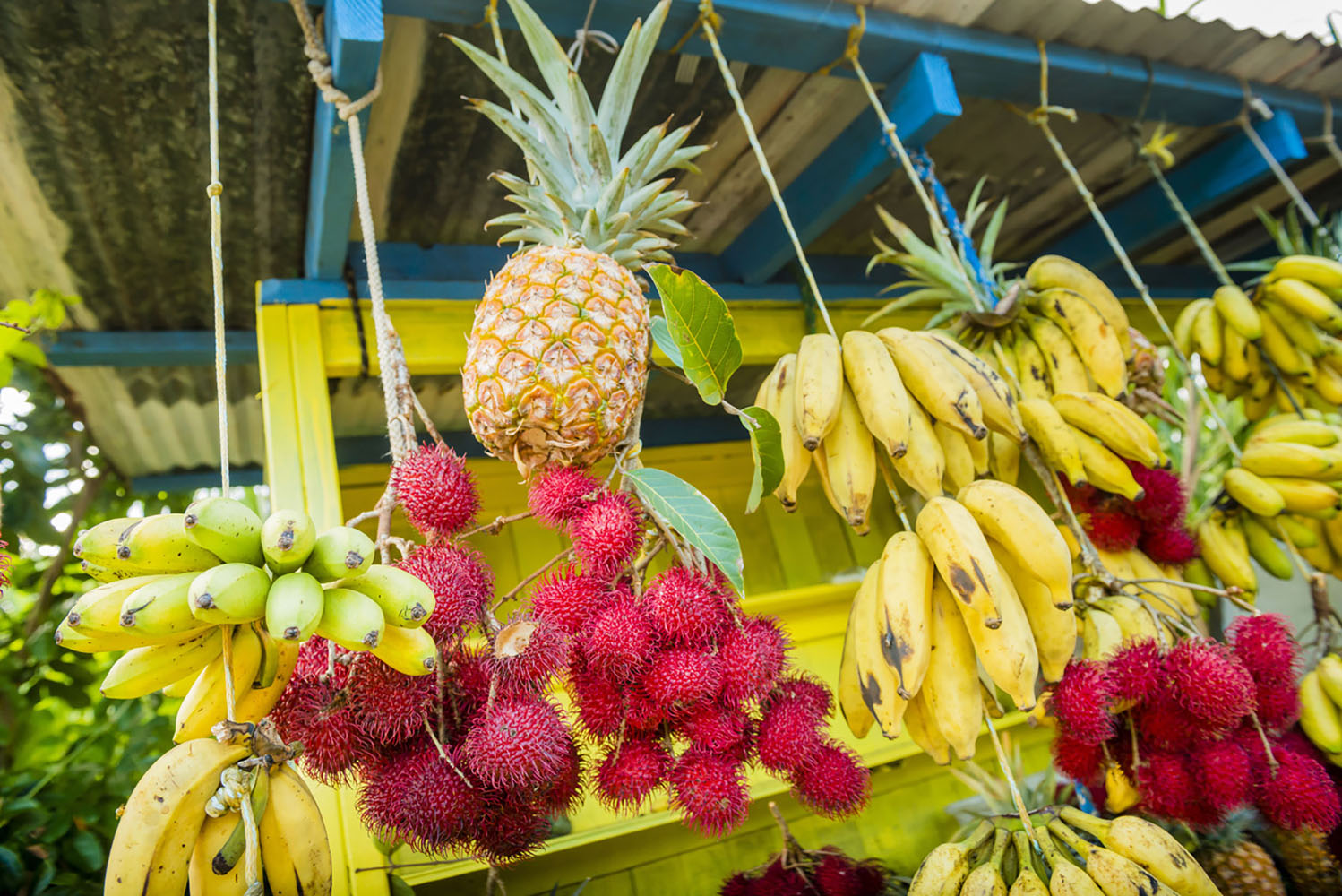 Fruits such as bananas and pineapples for sale in Hilo Farmers Market