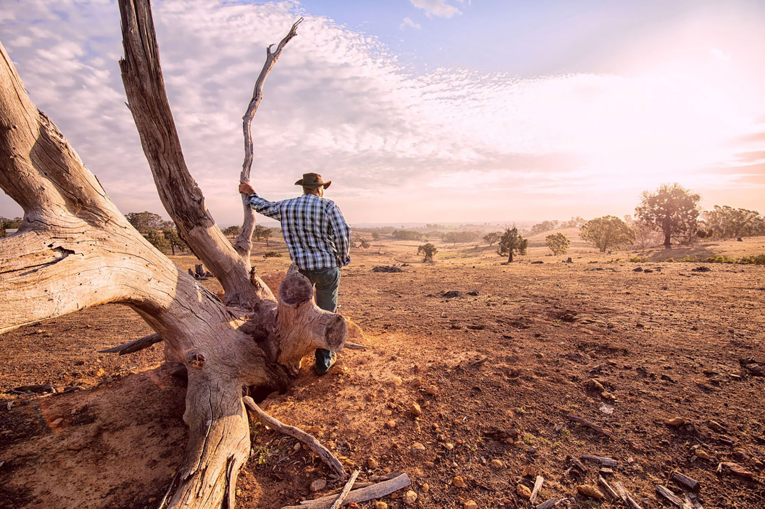 Australian man looks into the Outback on a warm day