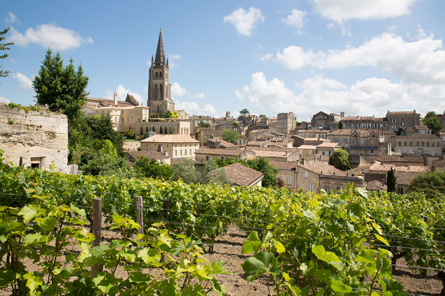 The landscape of Saint Emilion village in the Bordeaux region in France