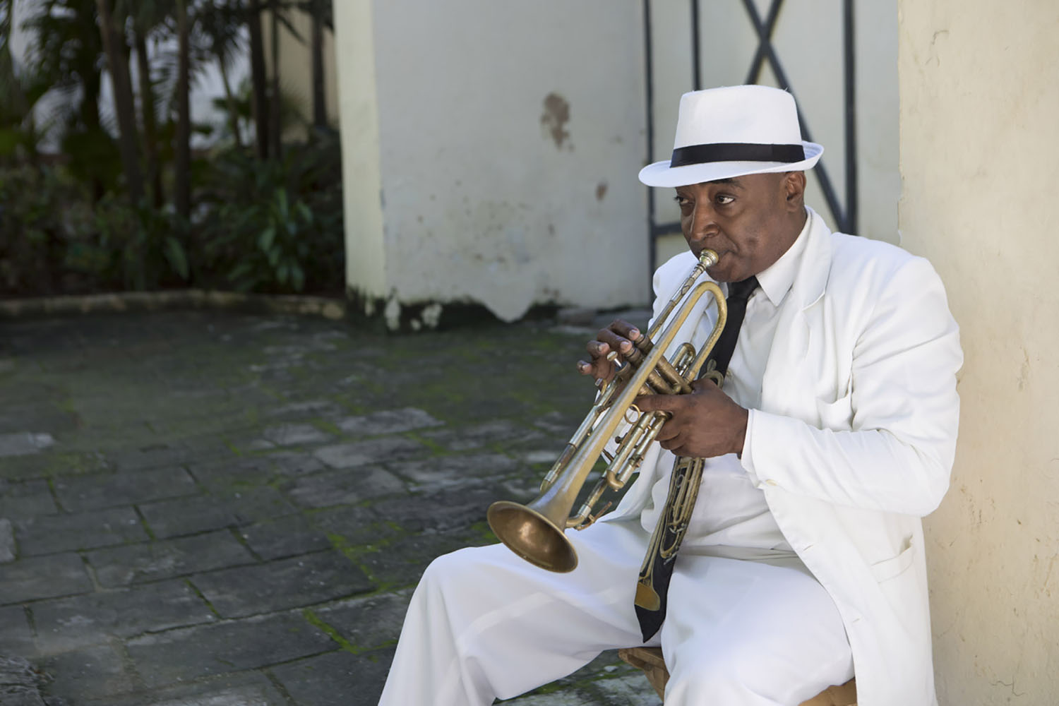 A cruise to Cuba is music to our ears!