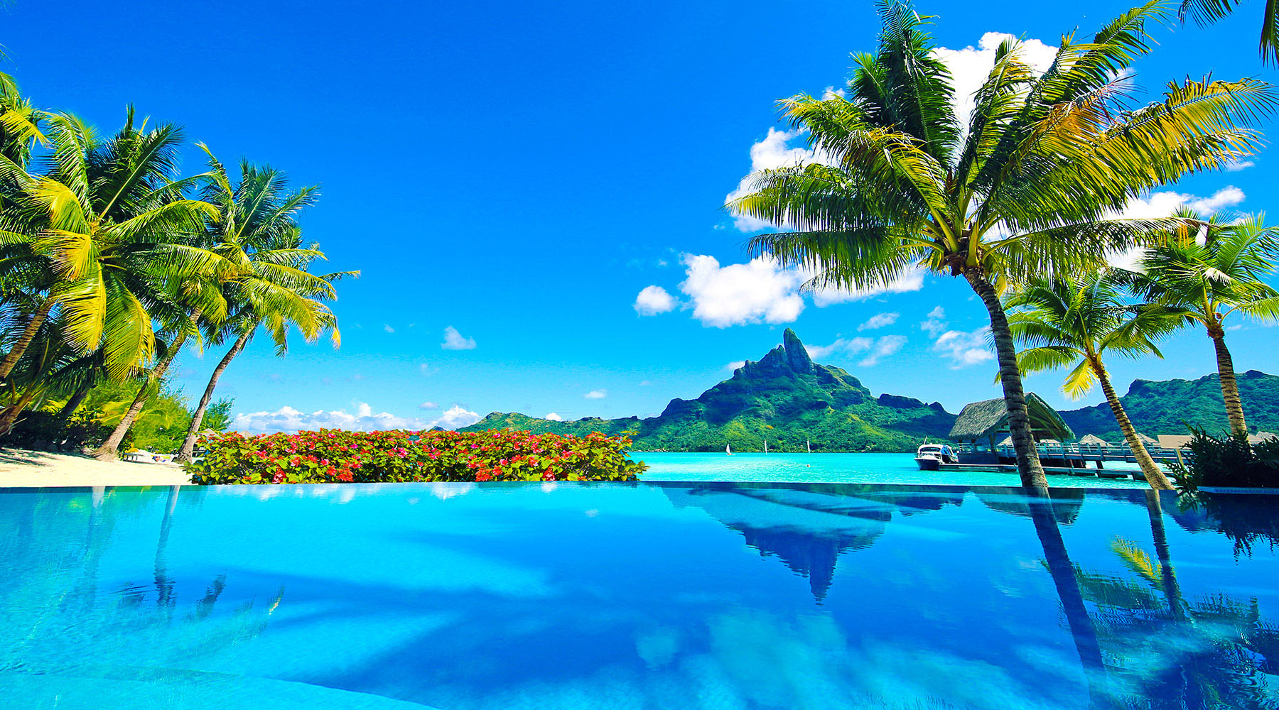 turquoise water, green mountains and palm trees of bora bora french polynesia