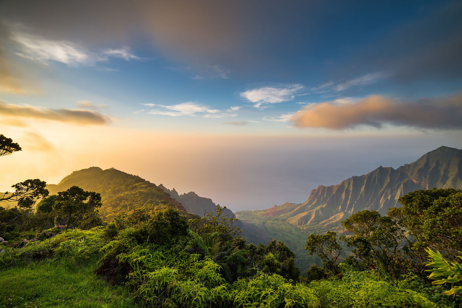 Seven Things to do in Hawaii