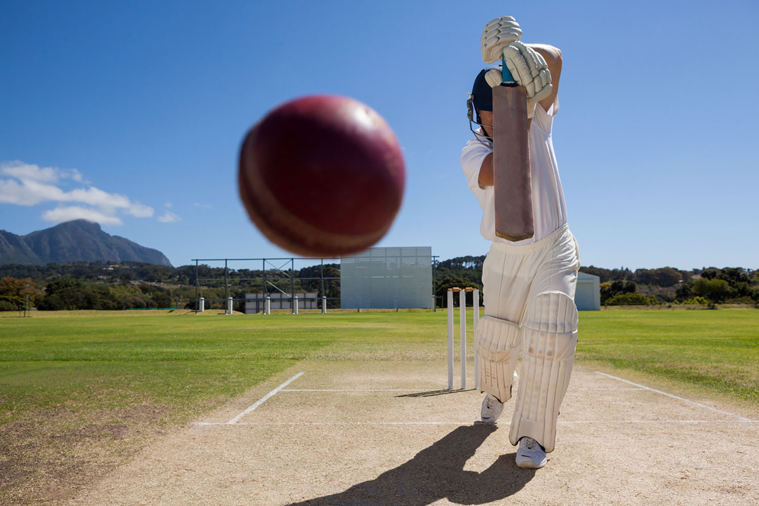 A Sports Fan's Guide to South Africa