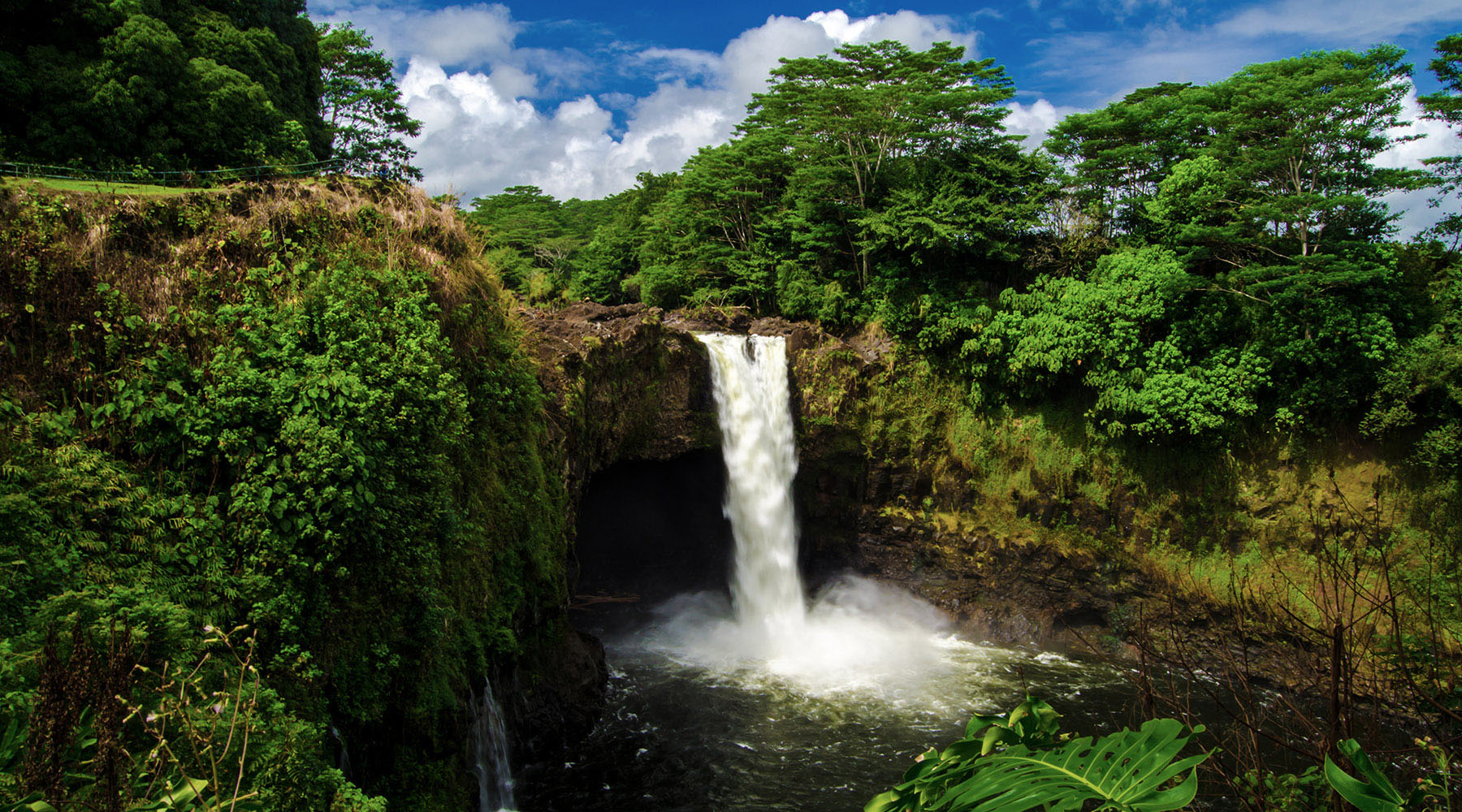 A waterfall in Hilo, Hawaii