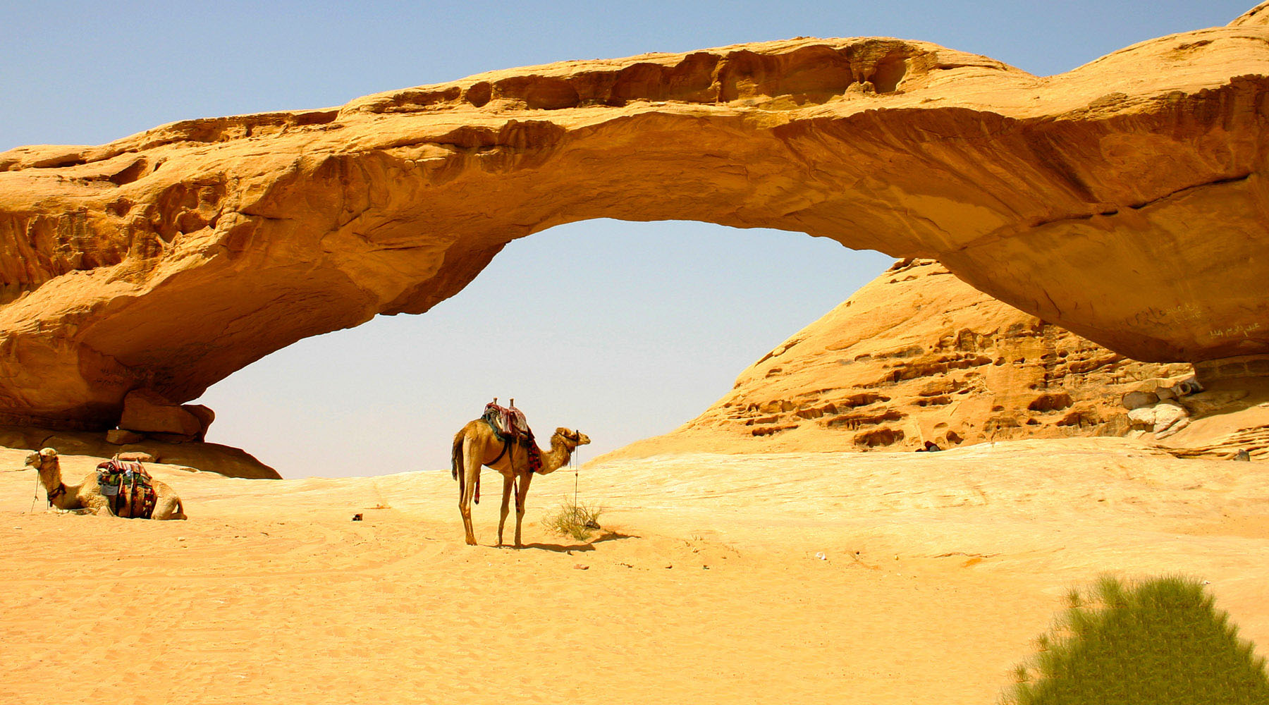 16-Night Oman, Egypt & Jordan Voyage