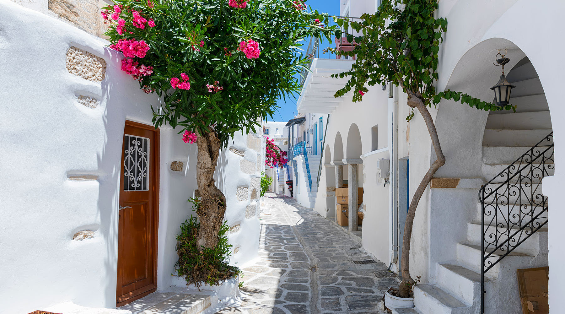 6-Night Greece Intensive Voyage