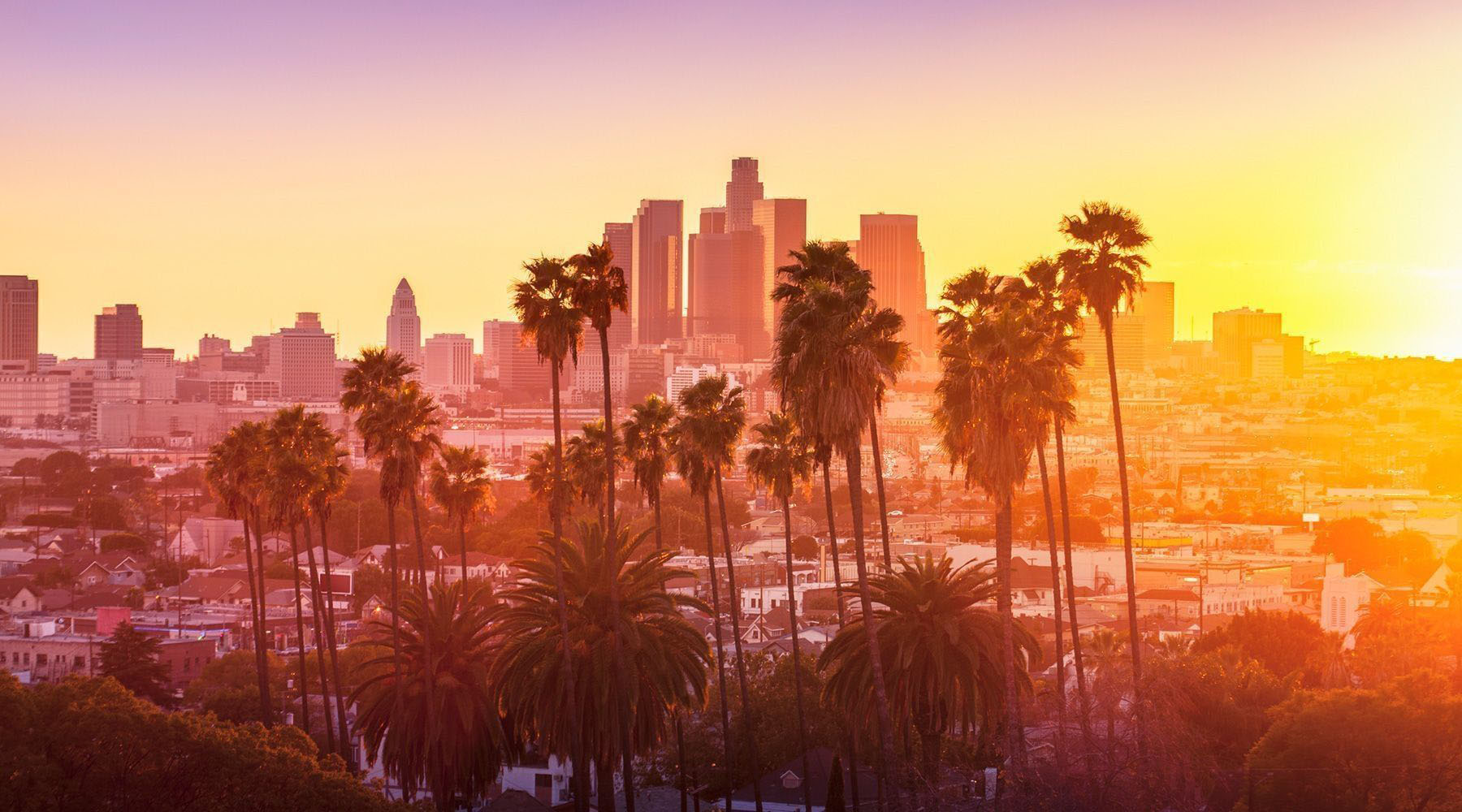 city landscape of los angeles california with palm trees