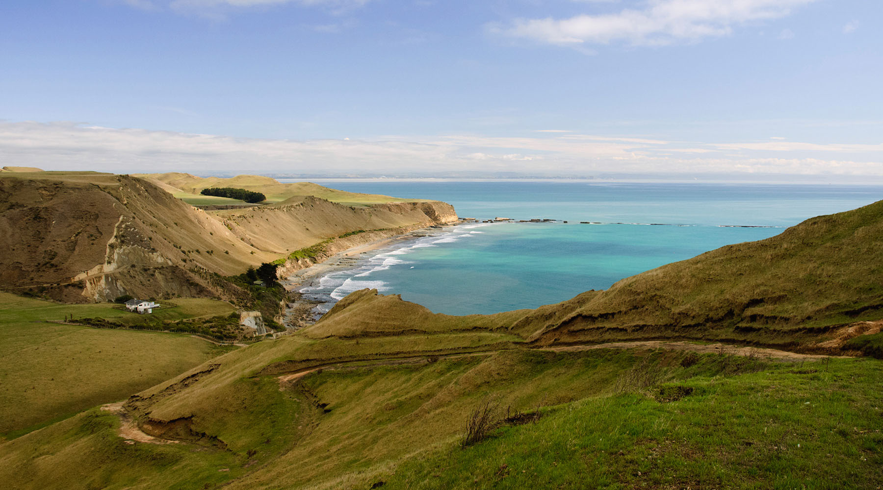 An Excursion to New Zealand's Cape Kidnappers