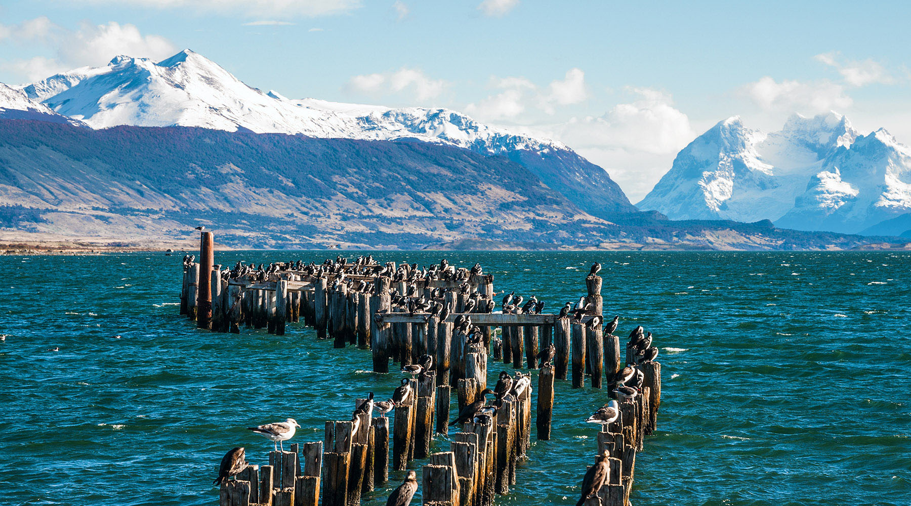 15-Night Chilean Fjords Voyage