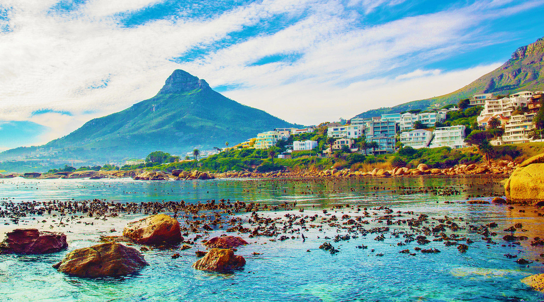 10-Night South Africa Intensive Voyage
