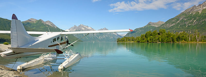 Taku Lodge Feast and Five Glacier Seaplane Discovery