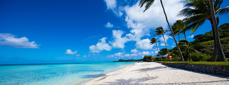 The white sands and palm trees of Matira Beach in Bora Bora, French Polynesia