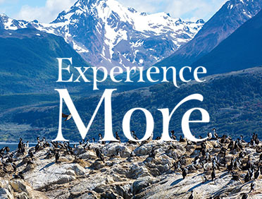 Experience More