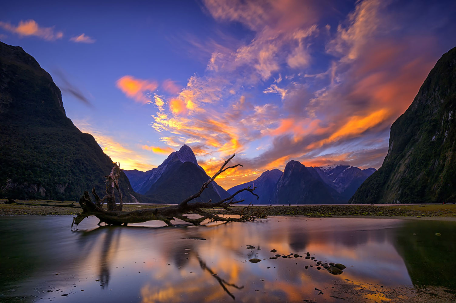 Milford Sounds, New Zealand is one of the most beautiful destinations in the world.