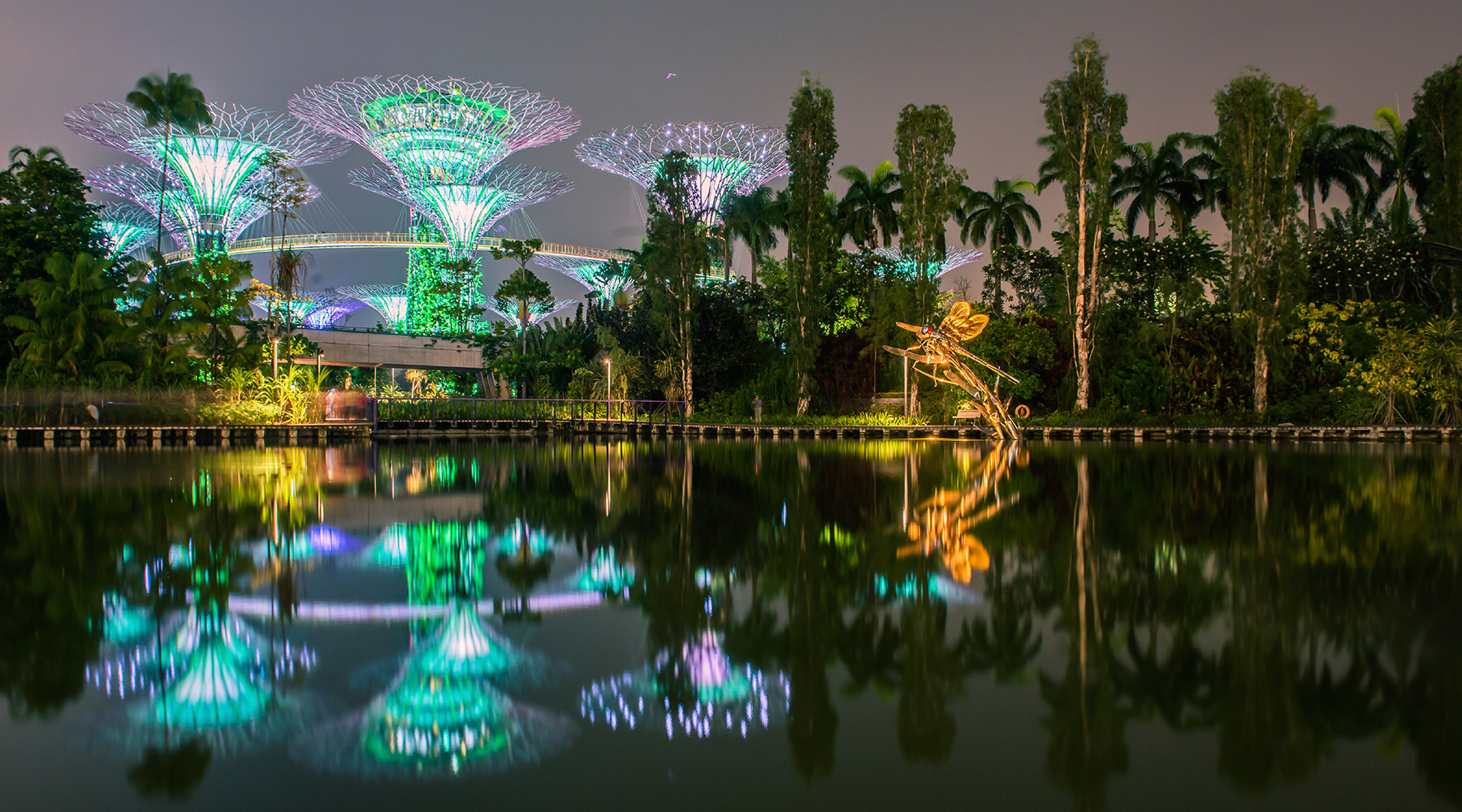 The Botanical Gardens illuminated at night in Singapore.