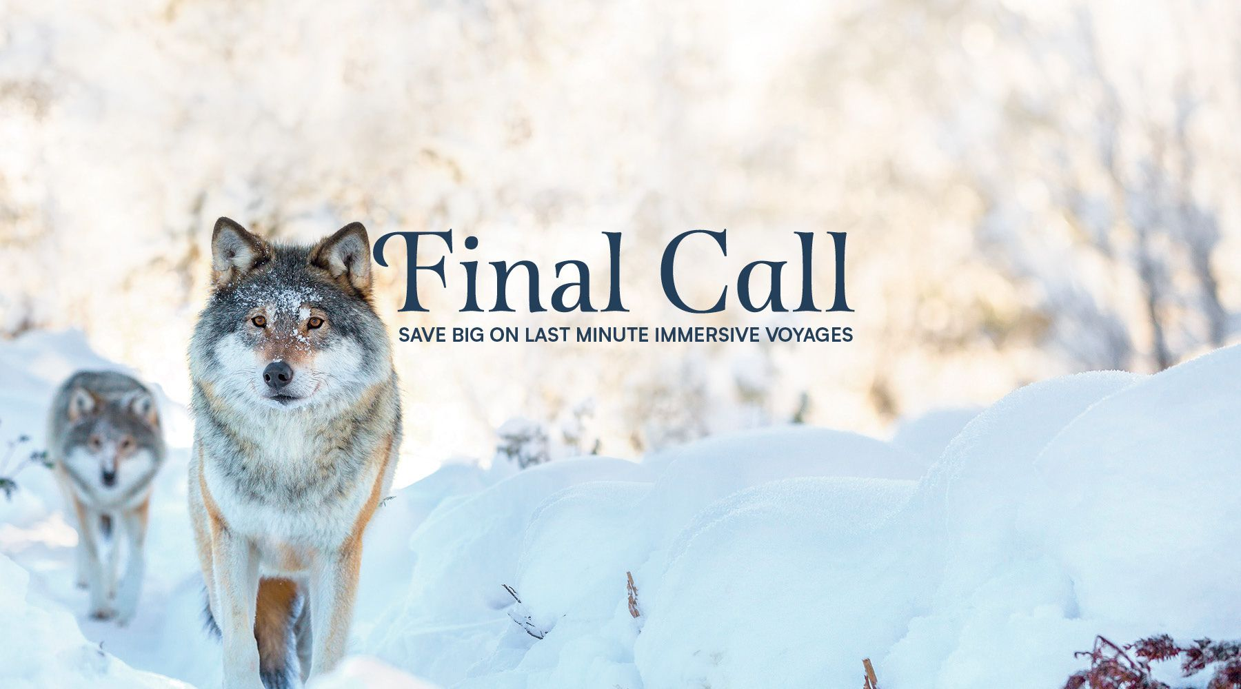 Final Call Wolves